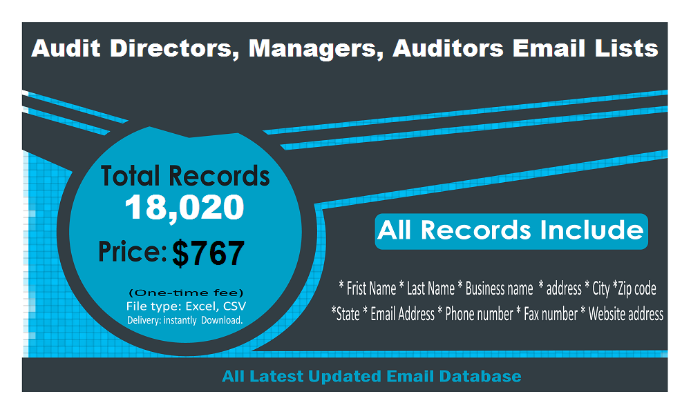 Audit Directors Auditors Email List
